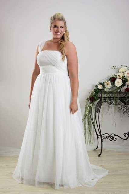 Plus Size A Line Dresses