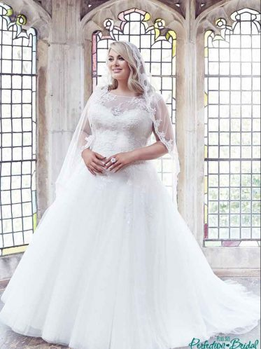 Anastasia princess plus size wedding dresses and lce edge veil