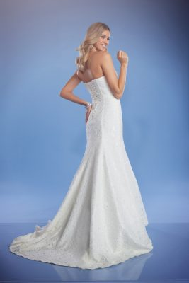 Lace wedding gown Zara back