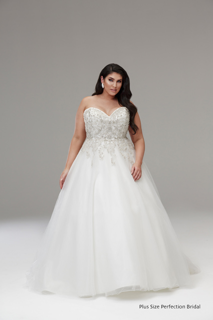 Plus Size Wedding Dresses Melbourne | Leah S Designs